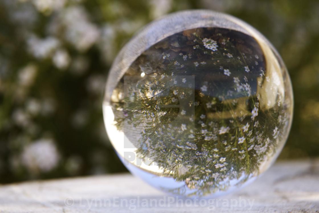 """""""Studies in Glass ....Springtime"""" stock image"""