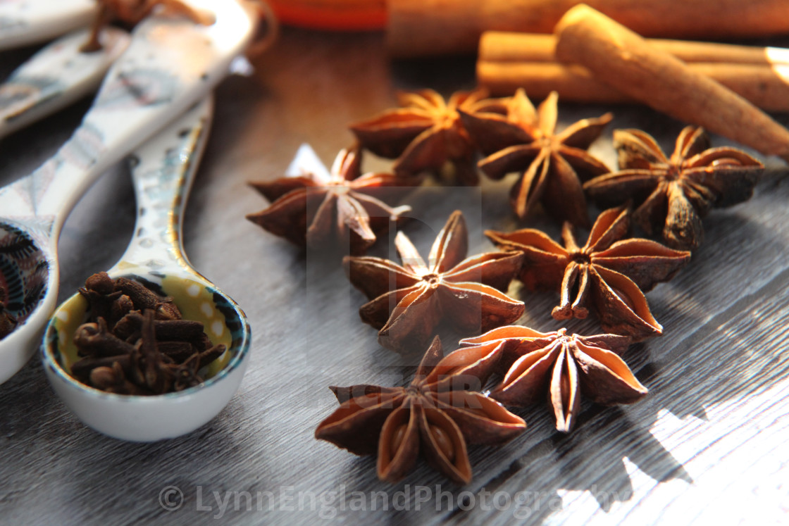 """Sunlit autumn spices"" stock image"