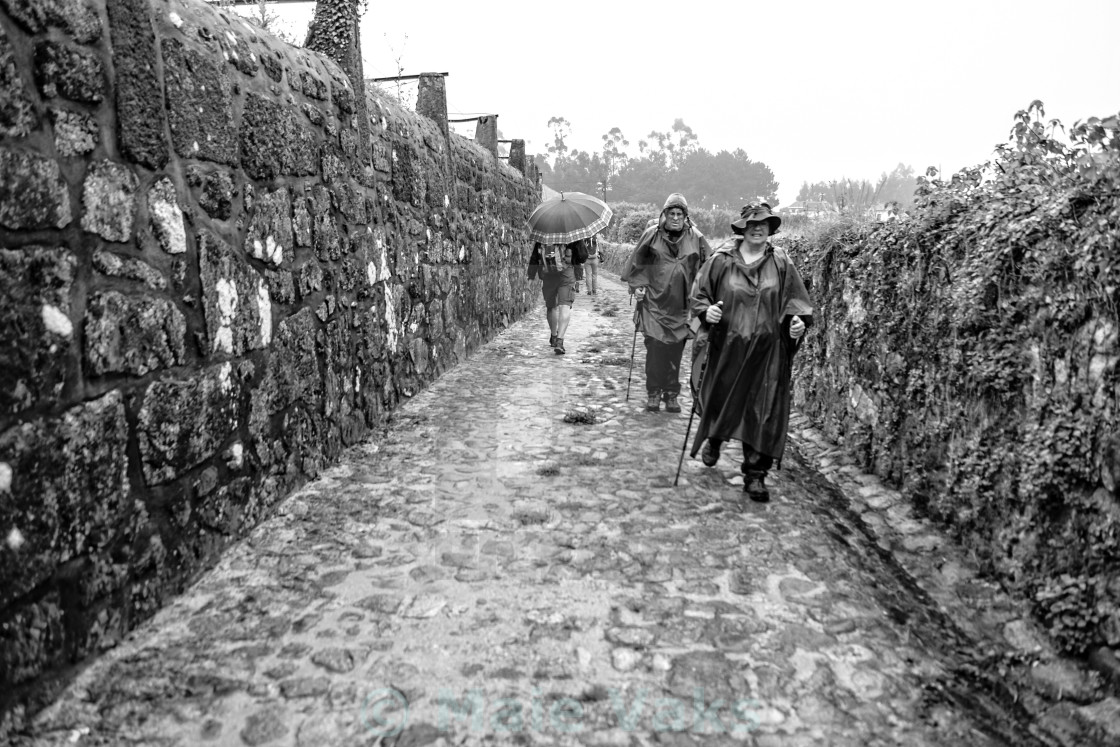 """""""Camino de Santiago"""" stock image"""