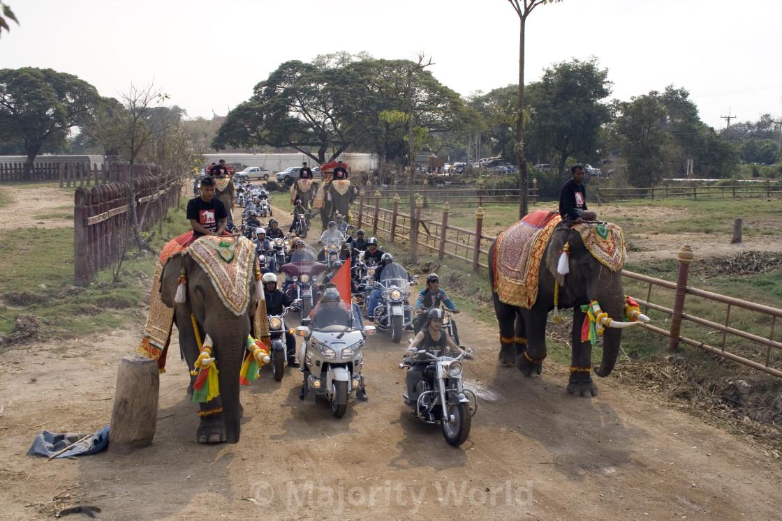 """Harley Davidsons and elephants. Thailand. January 21, 2007."" stock image"