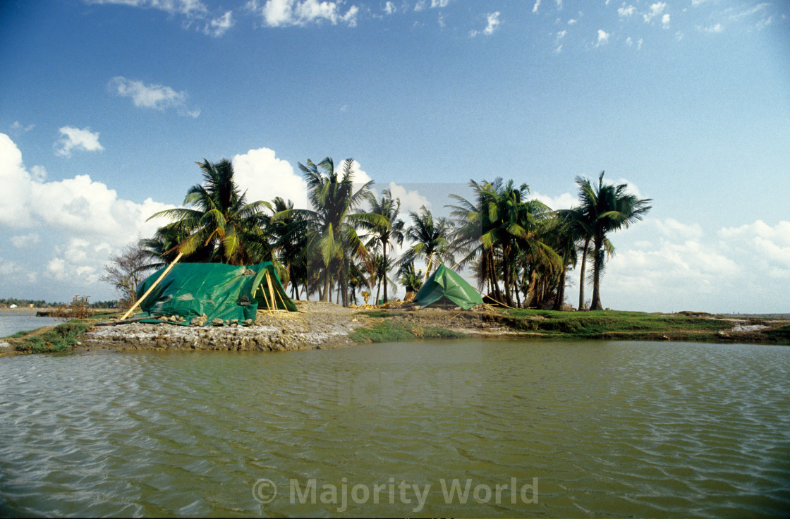 """""""Temporary shelters for the cyclone affected people, on the bank of Sangu..."""" stock image"""