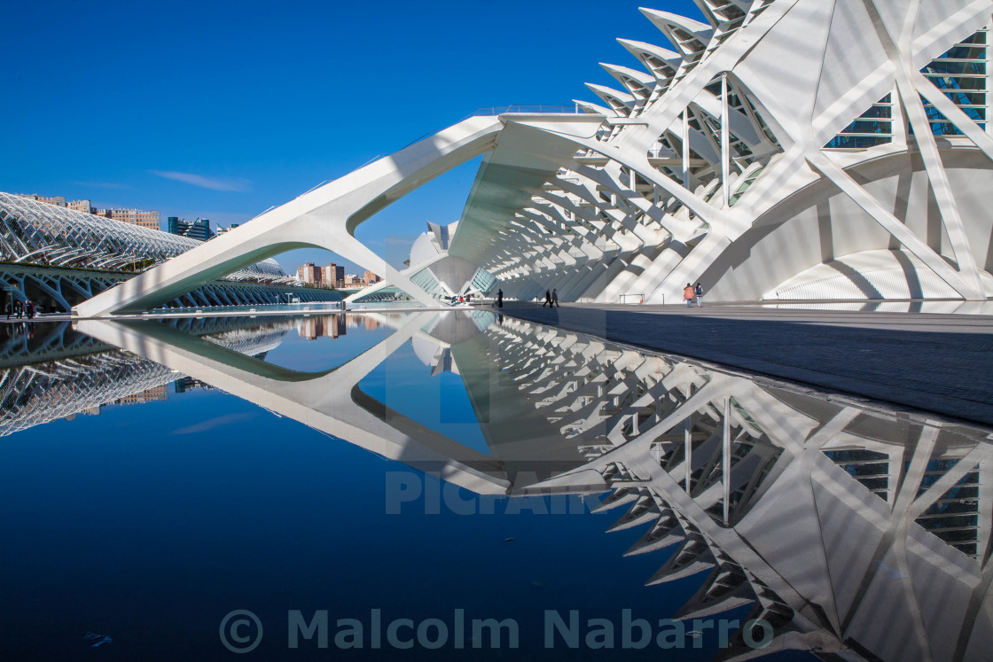 """Valencia, City of Arts and Science"" stock image"