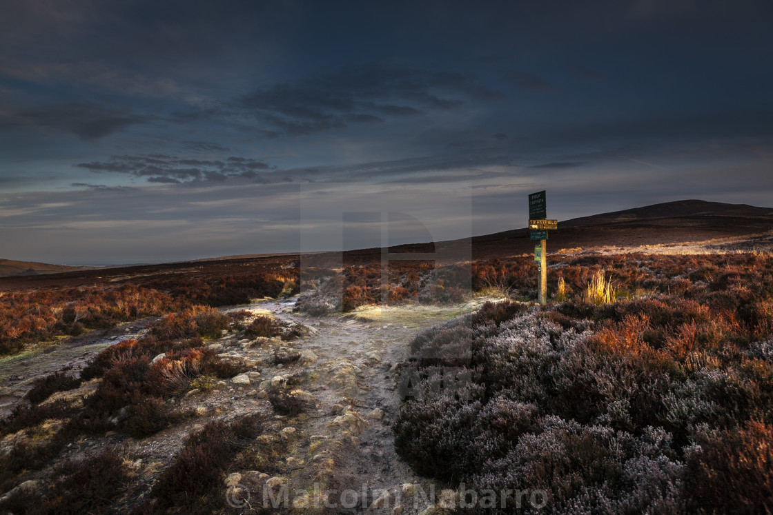 """Dawn on the Moor"" stock image"