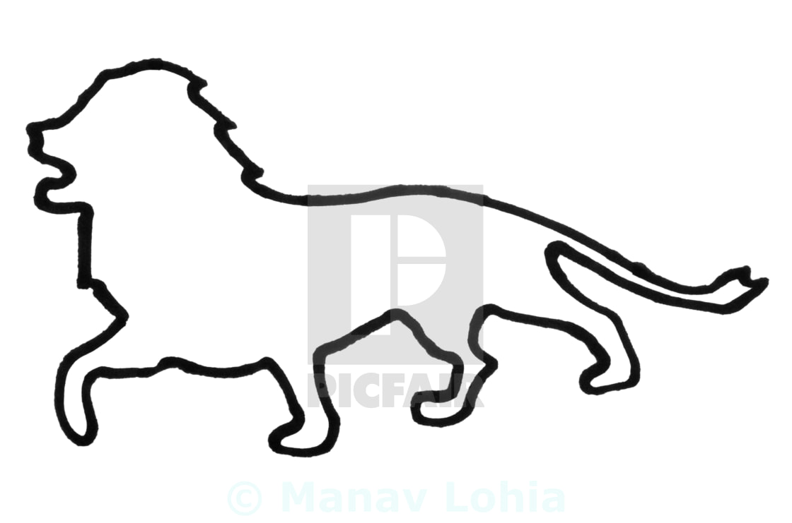 Outline Of A Lion License Download Or Print For 12 40 Photos Picfair Download 56 lion outline free vectors. picfair