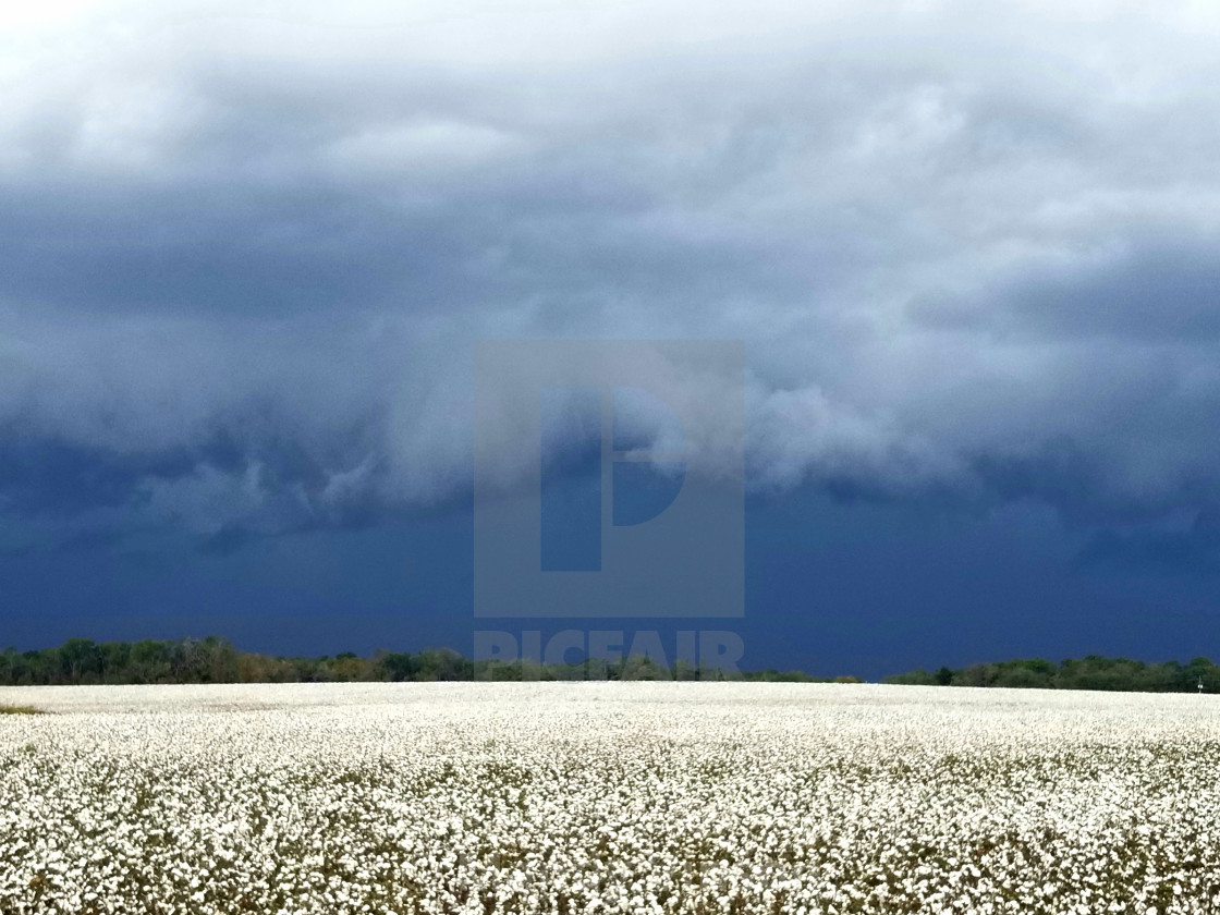 """""""A storms a comin"""" stock image"""