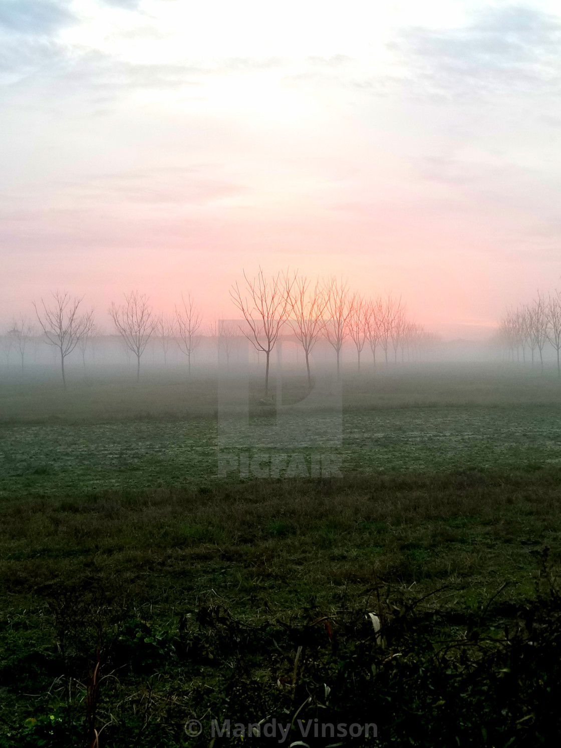"""Morning Fog"" stock image"