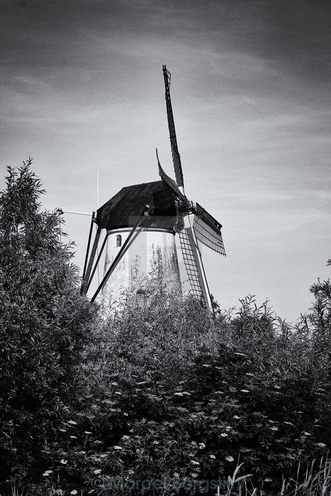 """Mill in Marienwaerdt"" stock image"