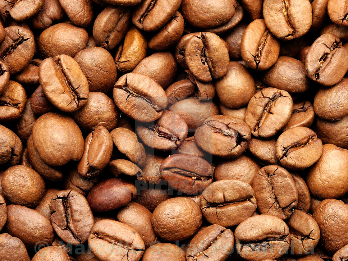 """""""Coffe beans"""" stock image"""