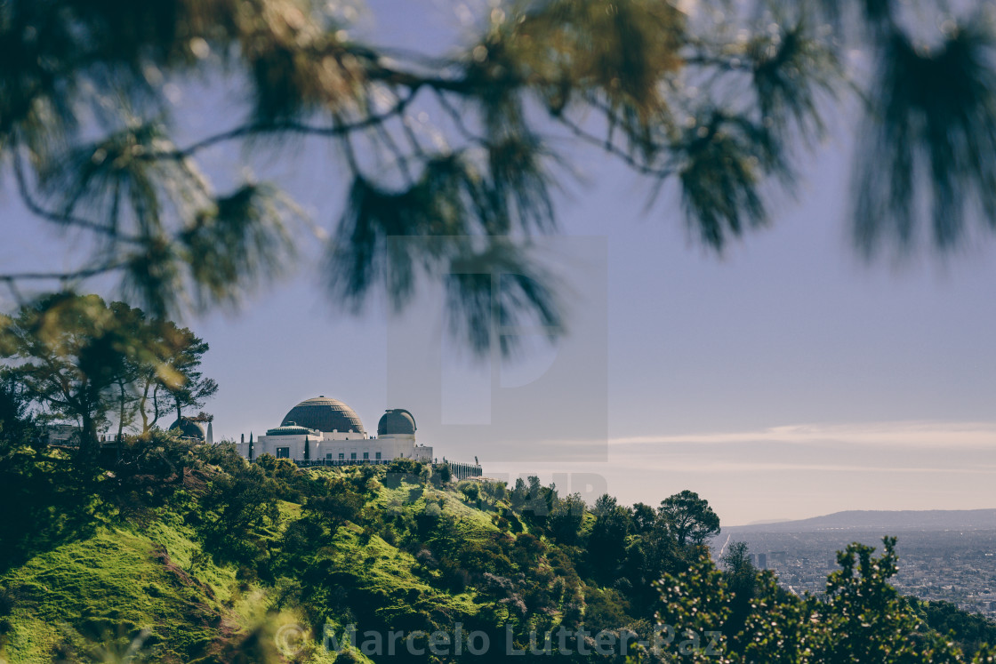 """""""Griffith Observatory"""" stock image"""