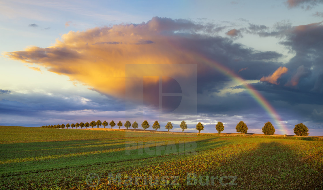 """colorful rainbow over the field after passing rainstorm"" stock image"