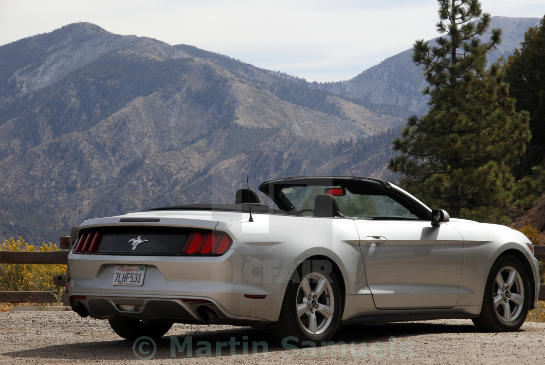 """Ford Mustang"" stock image"