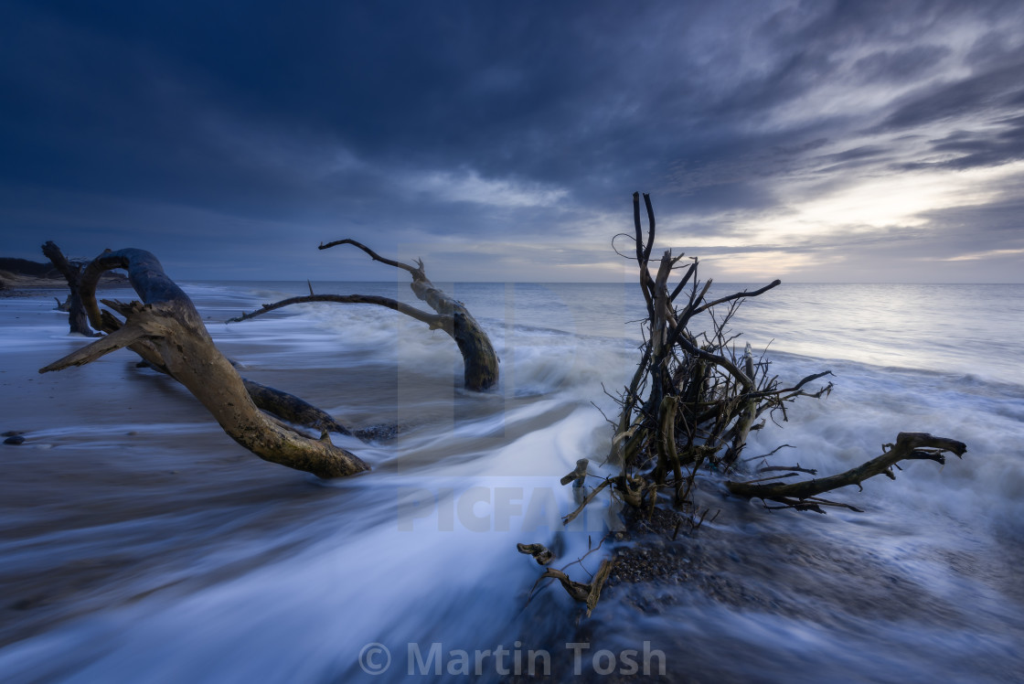 """""""Timber. A morning at Covehithe beach II. Swooshing water around dead tree on..."""" stock image"""