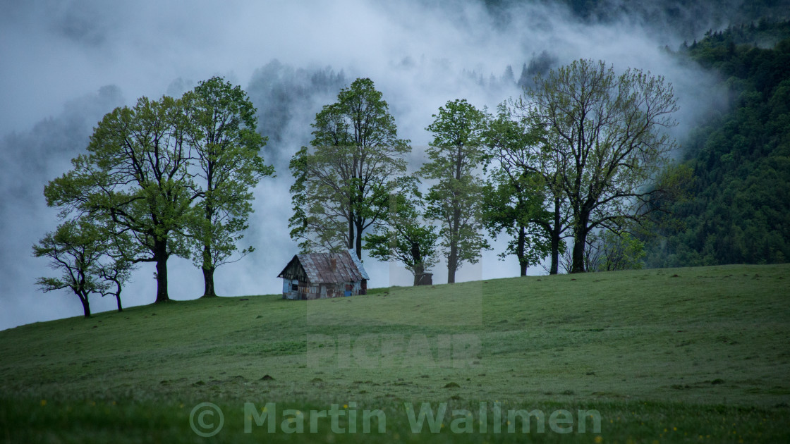 """""""Abandoned Cottage"""" stock image"""