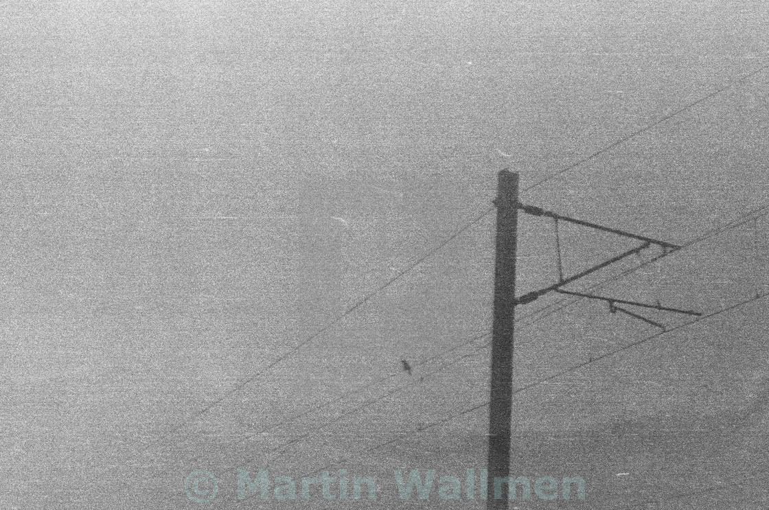"""Electricity Lines"" stock image"