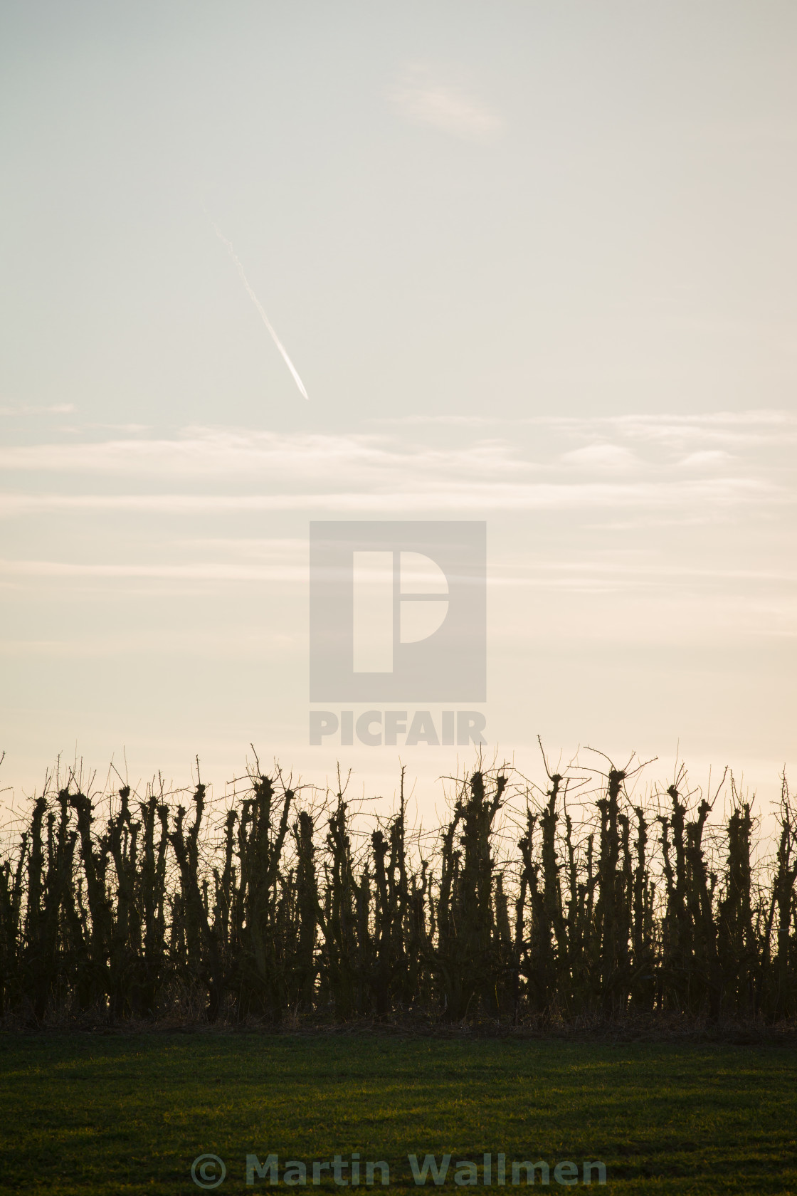 """Fields of Belgium"" stock image"