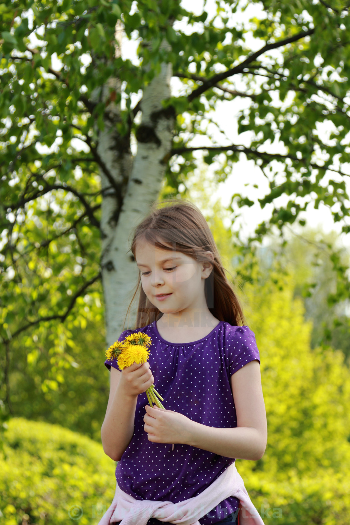"""""""girl with bouquet of dandelions"""" stock image"""