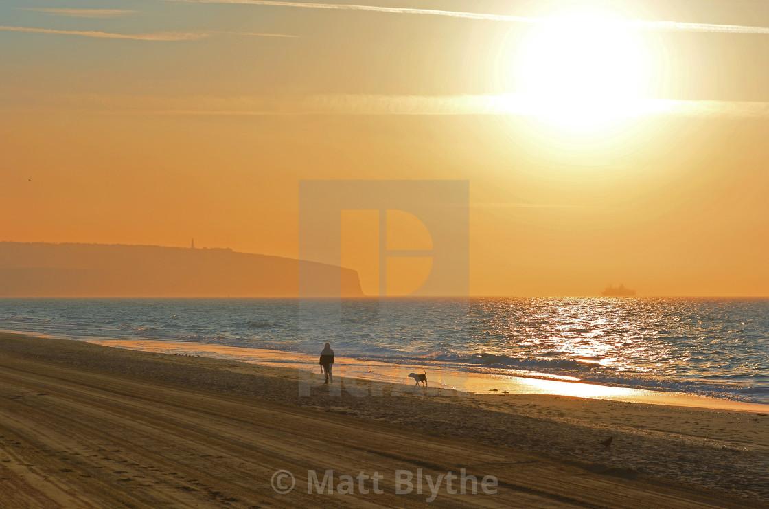 """Morning Beach Dog Walk"" stock image"