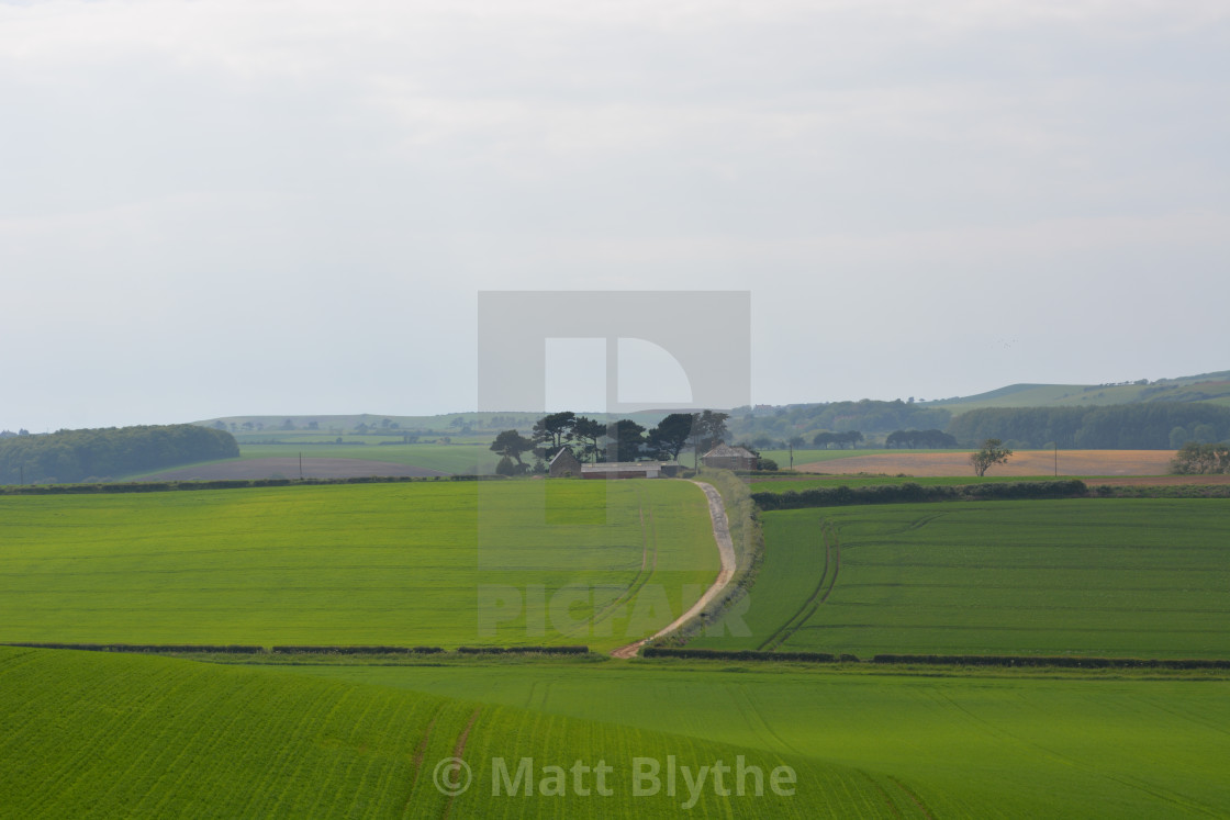 """Rolling Hills and Farmland"" stock image"