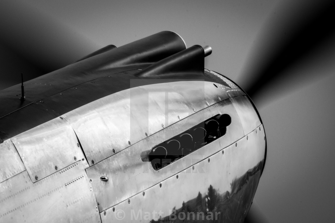 """""""P-40 Nose"""" stock image"""