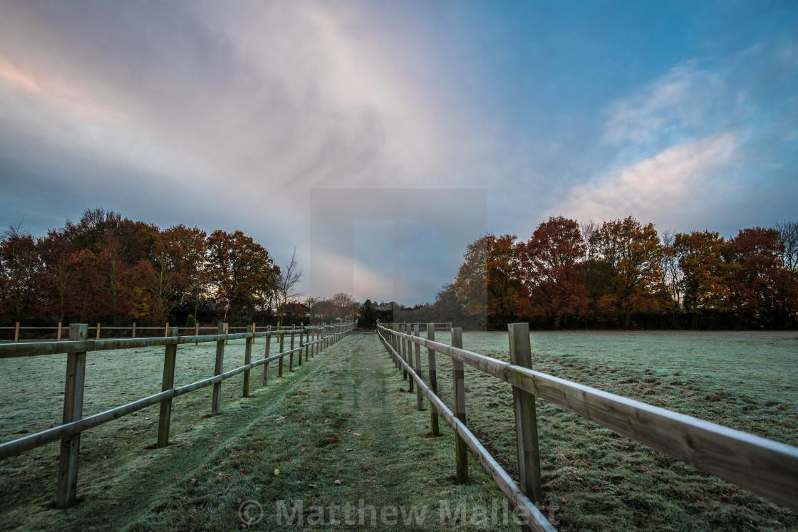 """Frosty Morning at Thorpe Le Soken"" stock image"