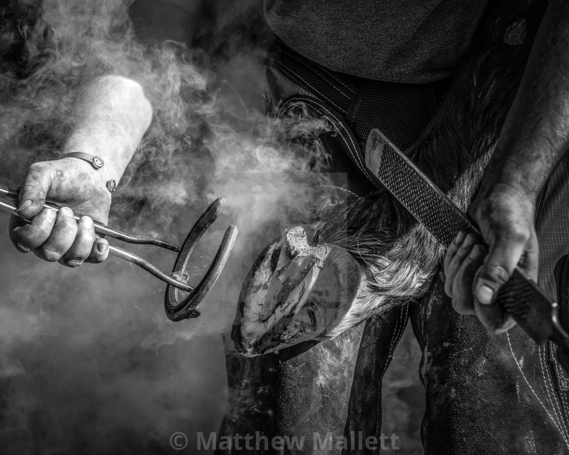 """The Farrier At Work"" stock image"