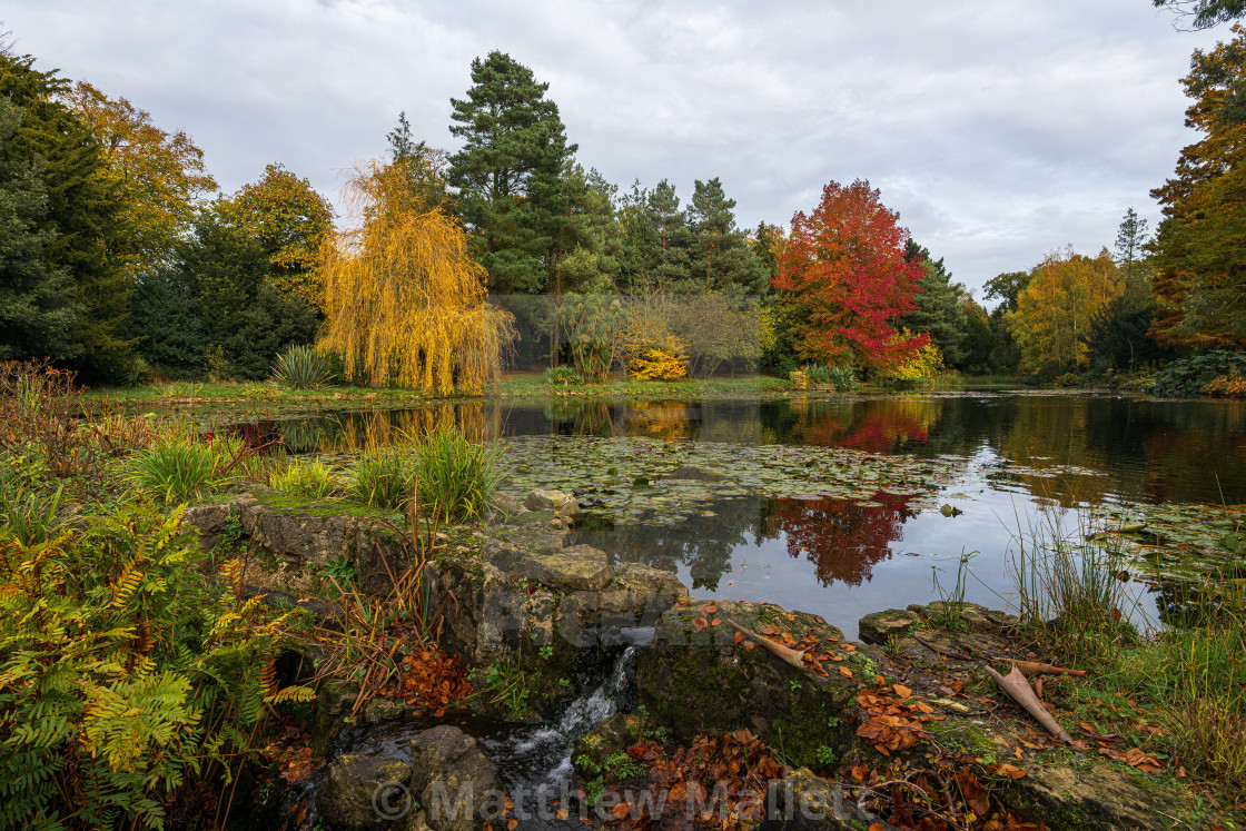"""Lifehouse Pond In Autumn"" stock image"