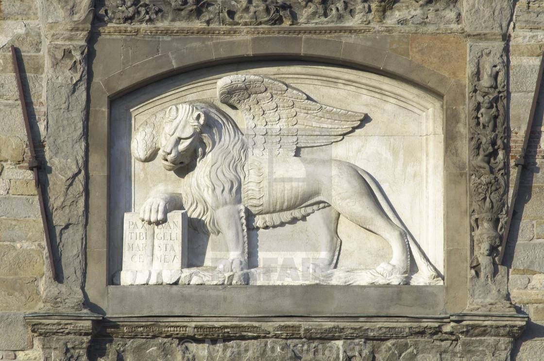 Lion widget - License, download or print for £12 40 | Photos