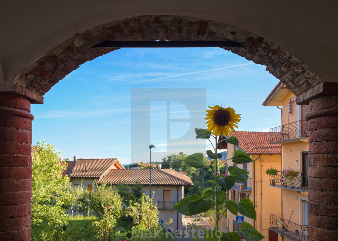 """""""Home decor scenery with sunflowers"""" stock image"""