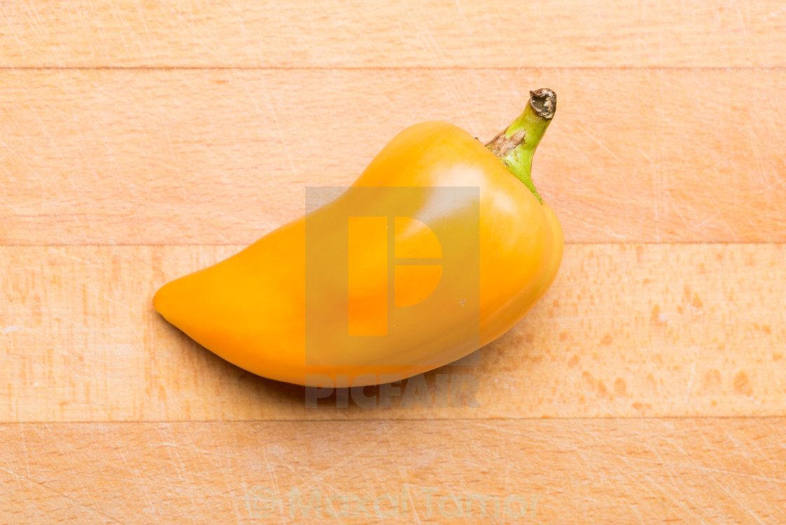 """Pepper From my Garden"" stock image"