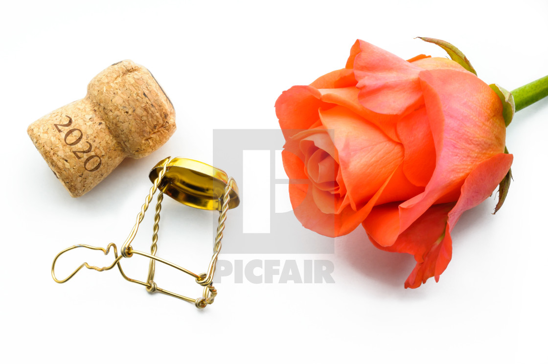 """2020 New year or Saint Valentine Rose"" stock image"