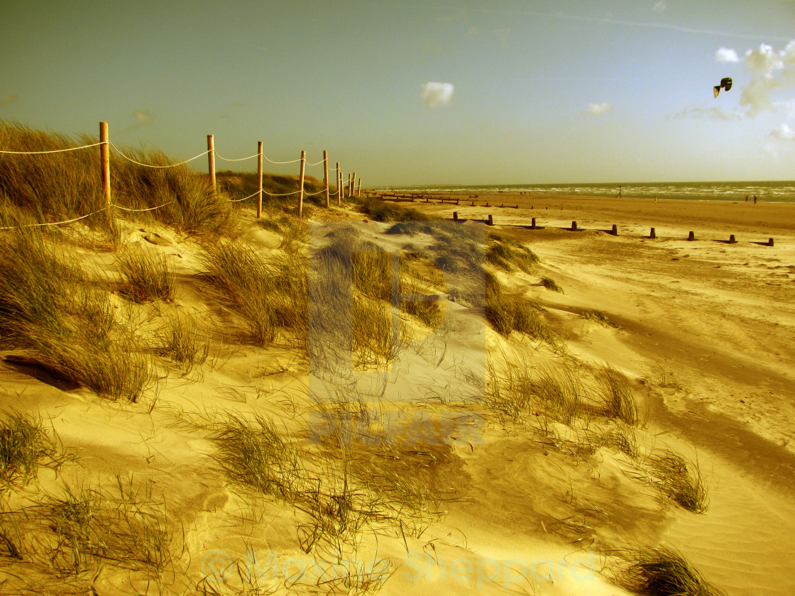 """Dunes, West Wittering"" stock image"