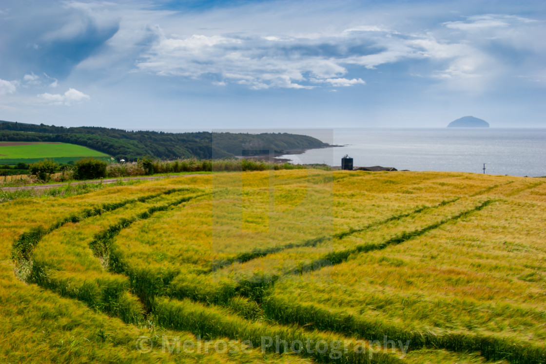 """""""View to Ailsa Craig through the green fields"""" stock image"""