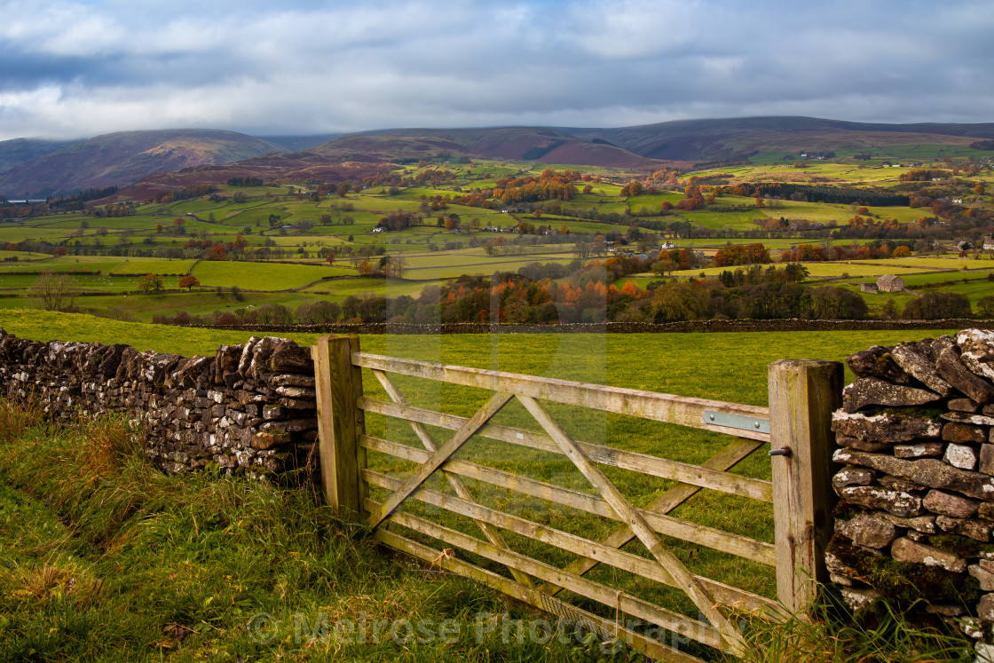 """""""Beautiful country view through the gates and into the fields"""" stock image"""