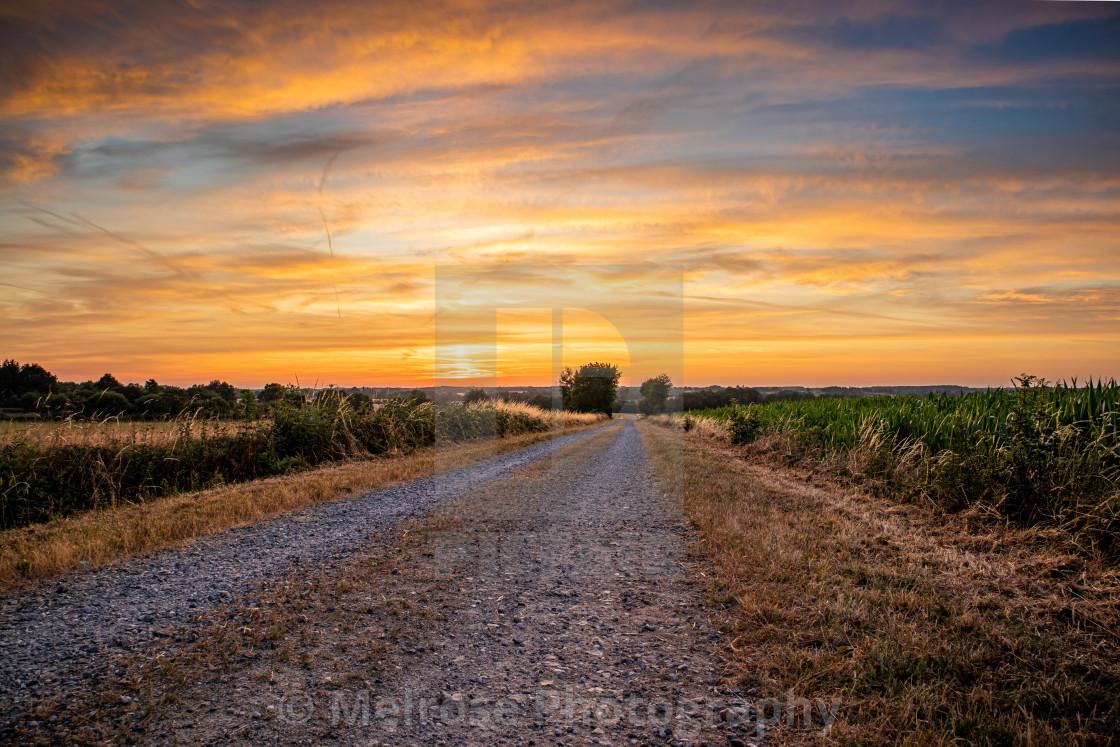 """Pathway to golden sunrise"" stock image"