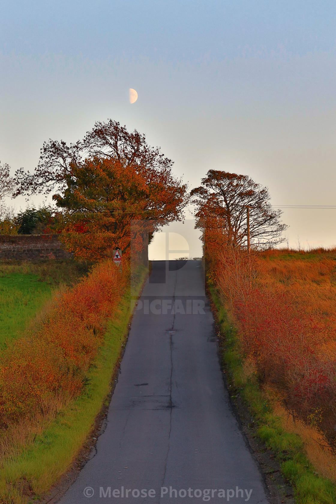 """Avenuehead Road in autumn"" stock image"
