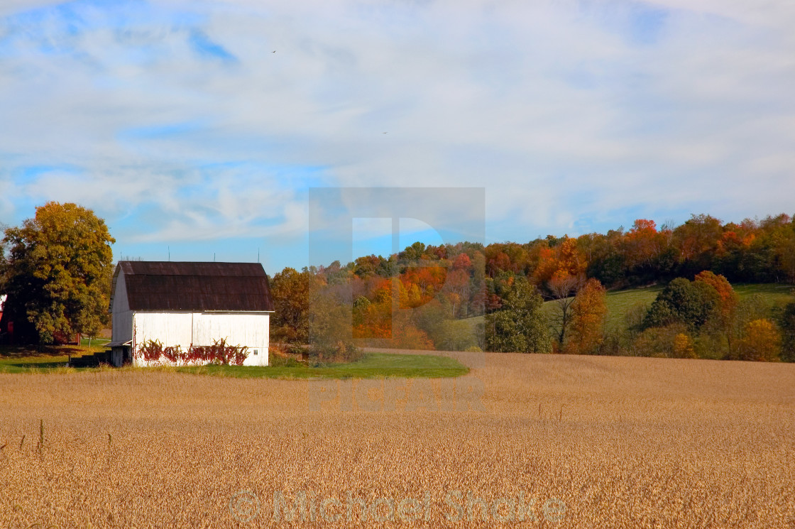 """Farmland In Autumn"" stock image"