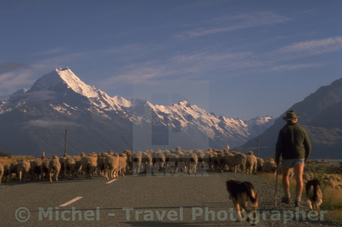 """New Zealand Mt Cook"" stock image"
