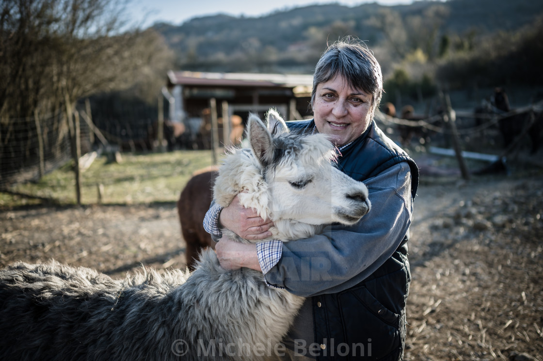 """The Alpaca Farmer - Amiata Arts & Crafts"" stock image"
