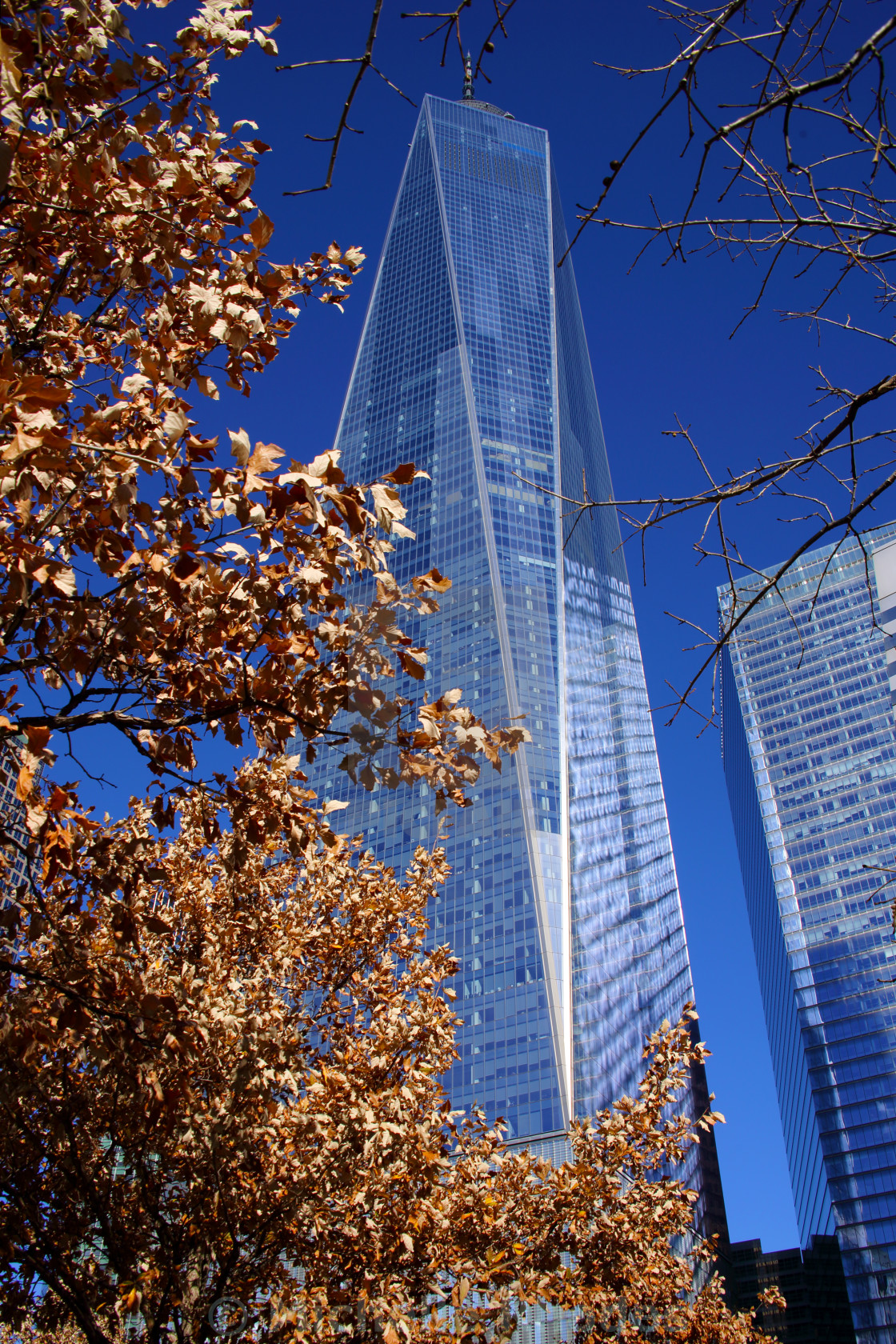 """World Trade Centre"" stock image"