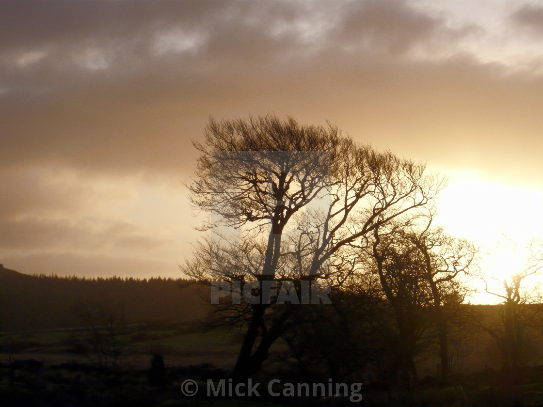 """A Dartmoor Evening #2"" stock image"
