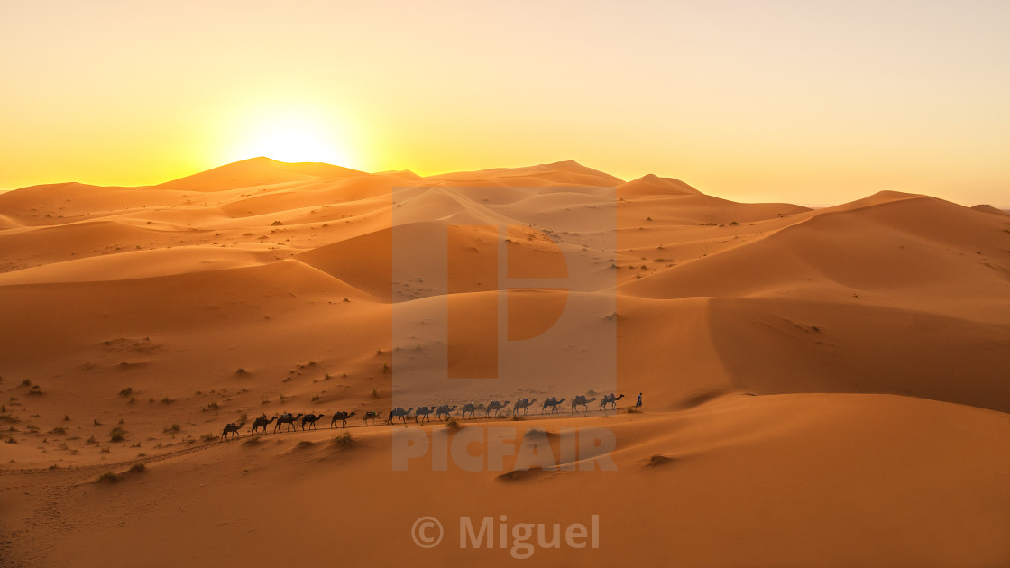 """Sunset in Sahara"" stock image"