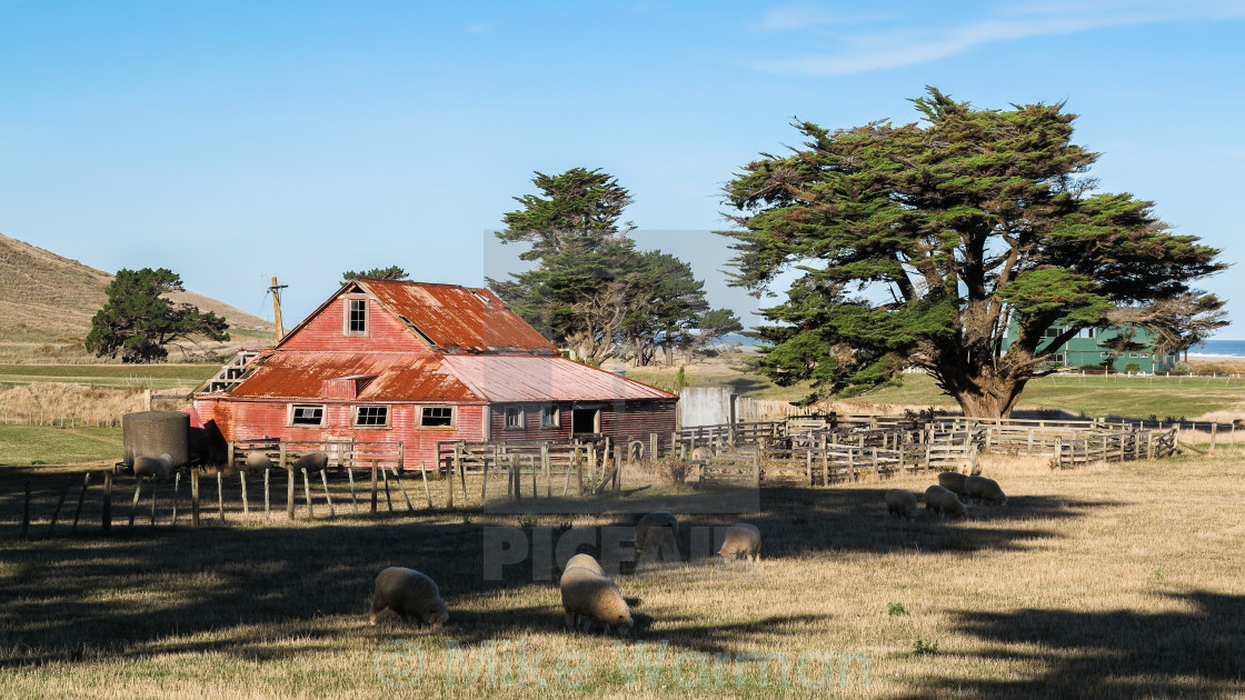 """""""rustic shearing shed"""" stock image"""