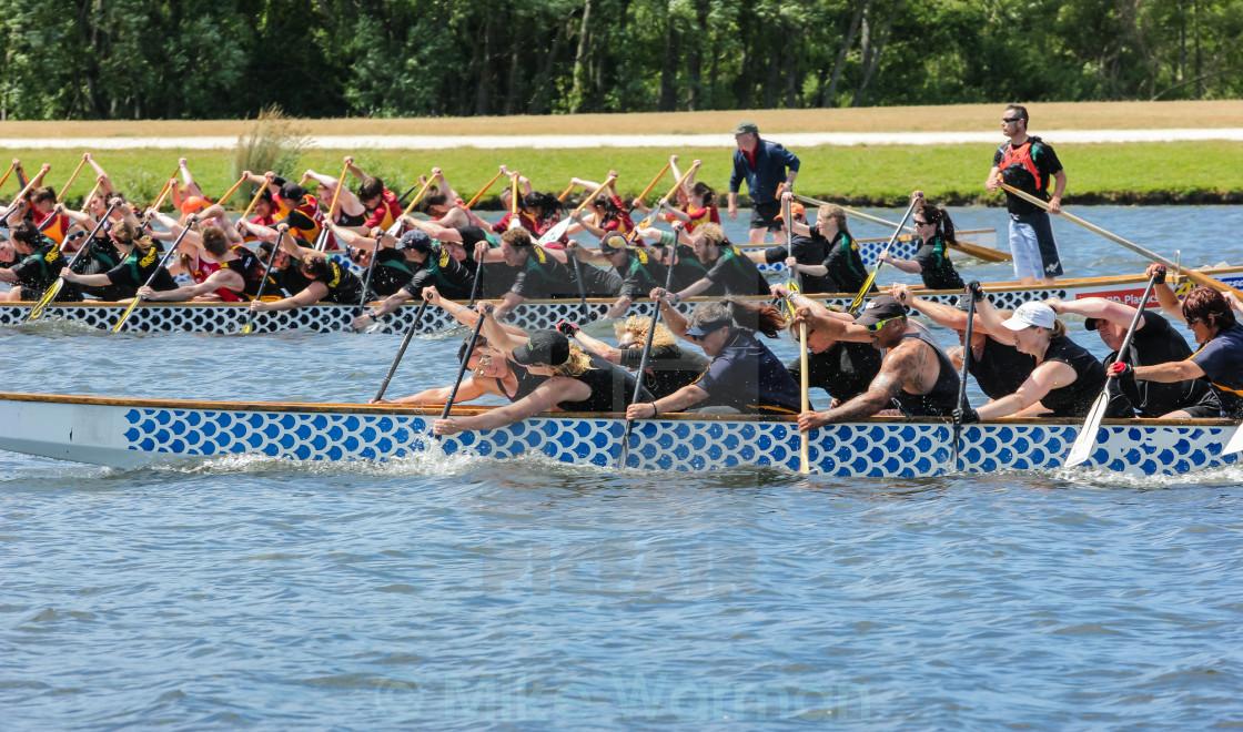 """dragon boat race"" stock image"