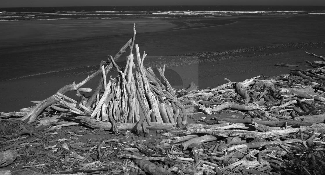 """Driftwood mono"" stock image"