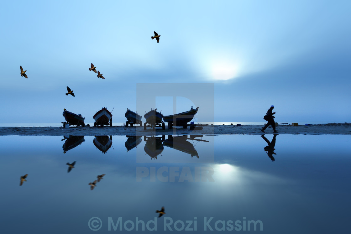 """A man walking at beach with birds"" stock image"