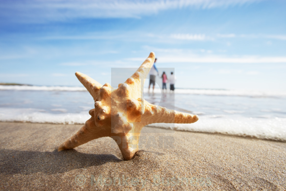 """Starfish In Foreground As Father Plays With Children In Sea"" stock image"