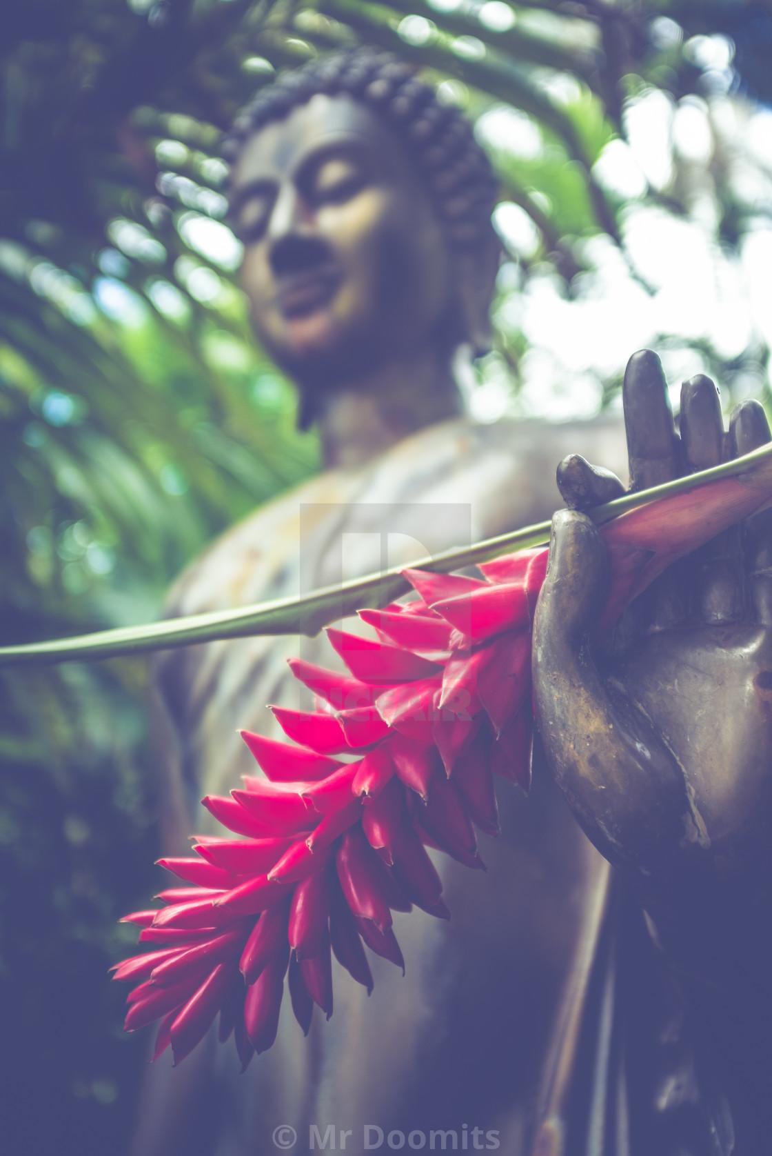 """Jungle Buddha Statue With Flower"" stock image"