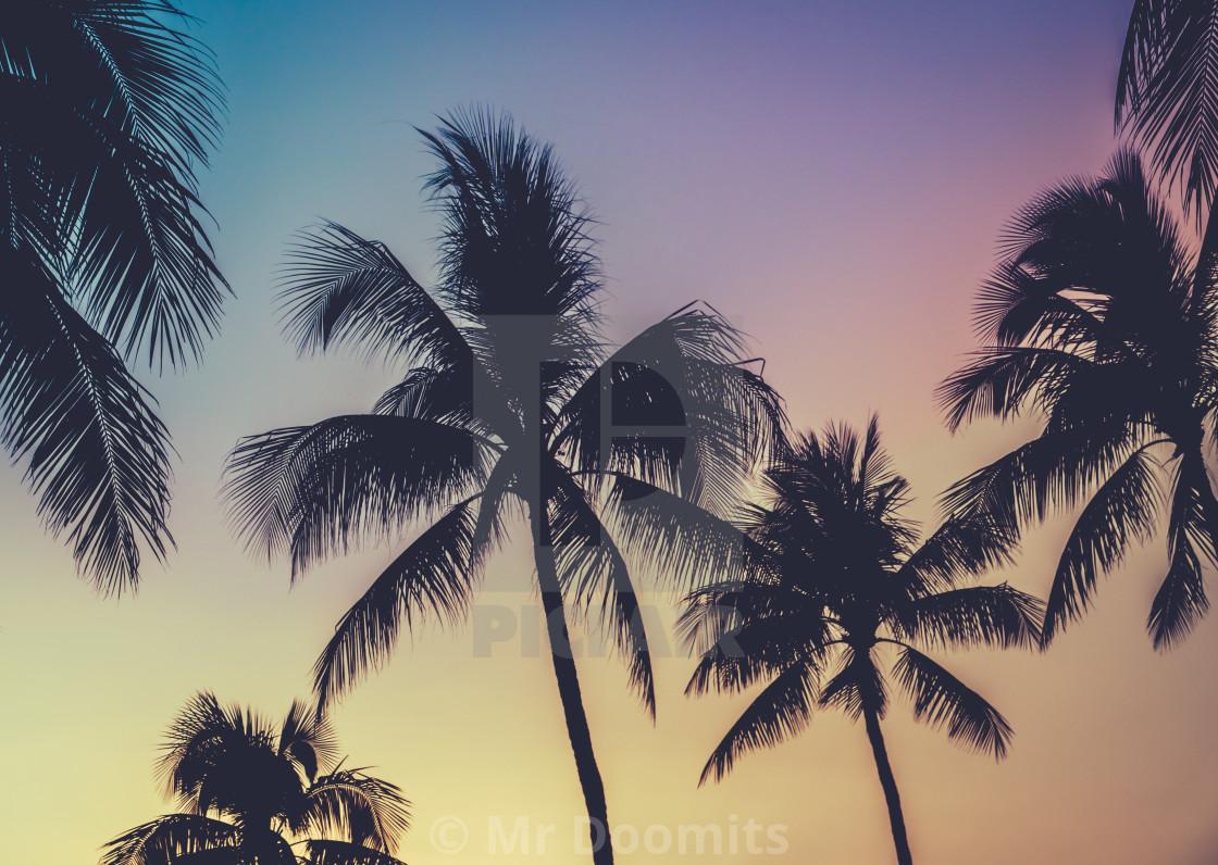 """Vibrant Retro Hawaii Sunset Palm Trees"" stock image"