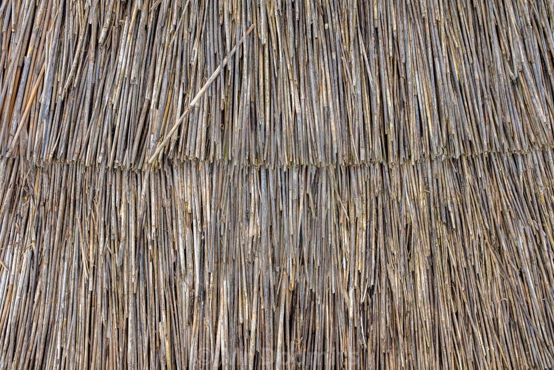 """Thatched Roof Detail Texture"" stock image"