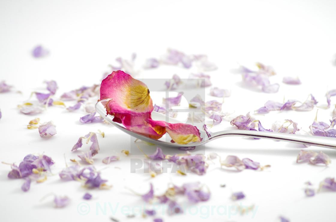 """Spoonful of rose petals"" stock image"